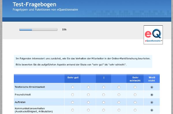 Screenshot eQuestionnaire